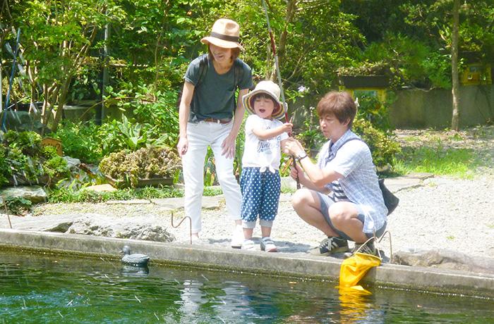 初心者お子様向けの浅い池