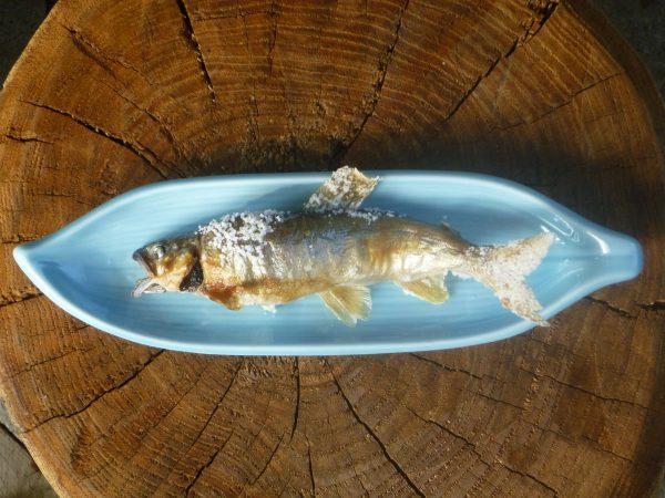 夏の魚。鮎が美味しいです!サムネイル
